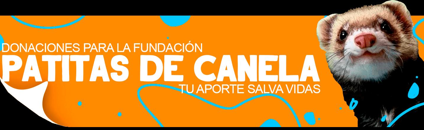 Fundación Patitas de canela | TusMascotas.cl