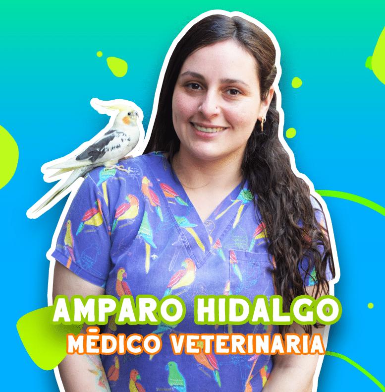 Amparo hidalgo - Médico veteriniaria | TusMascotas.cl