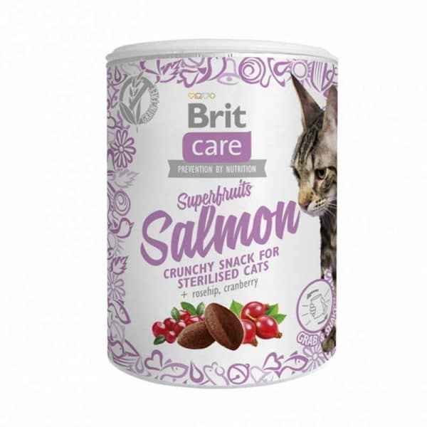 Lata Snack Superfruits Salmon 100g Brit