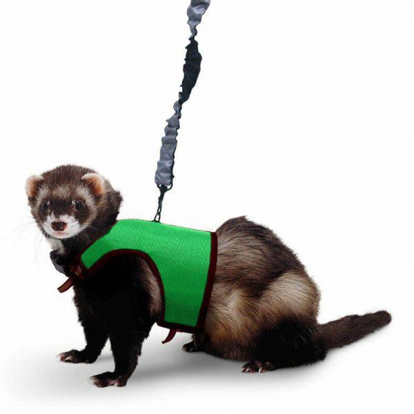 Kaytee Comfort Harness L Verde