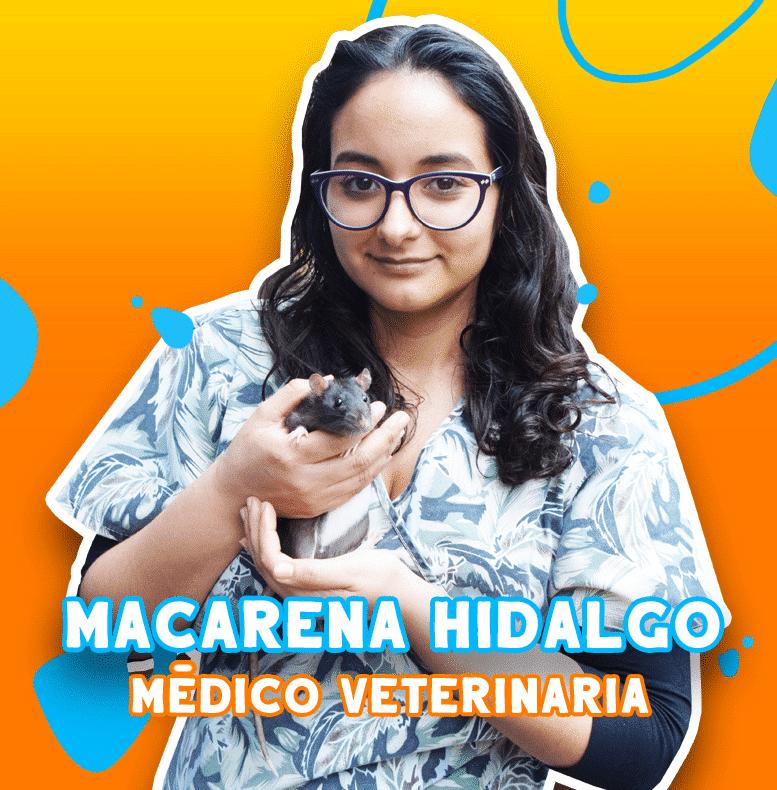 Macarena Hidalgo - Médico veteriniaria | TusMascotas.cl
