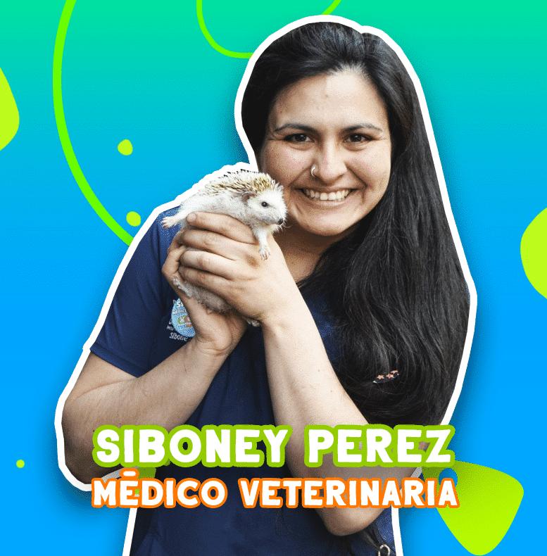 Siboney Perez - Médico veteriniaria | TusMascotas.cl