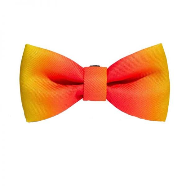 Zee.Dog Bow-Tie Citrus S