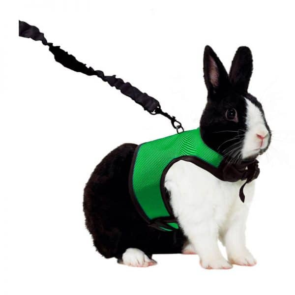 Kaytee Comfort Harness XL Verde