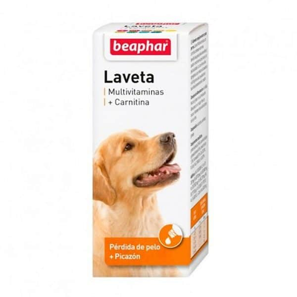 Laveta + Carnitine 50ml