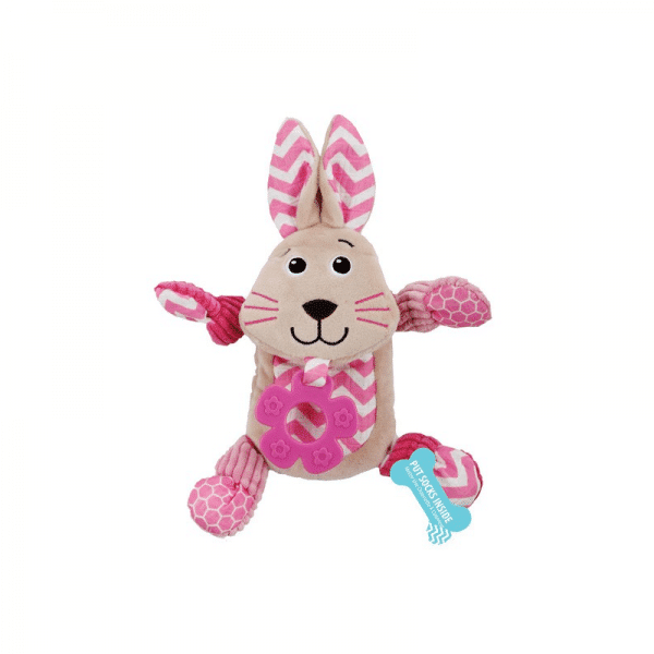 Litte Buddy Comforting Bunny AFP