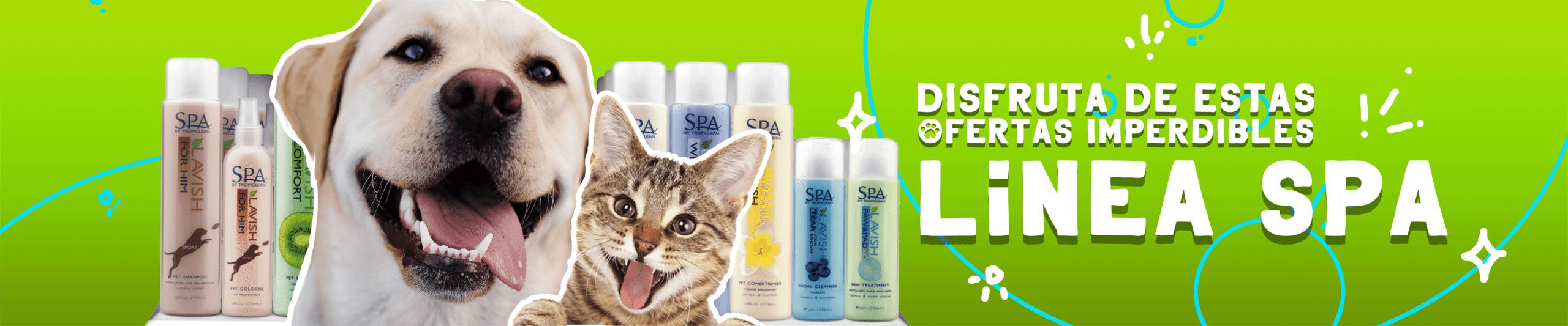 ofertas imperdibles en shampoo para perros y gastos.