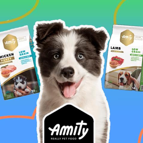 Amity (10% descuento)